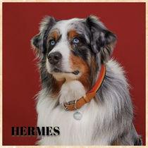 HERMES Unisex Pet Supplies