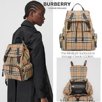 Burberry Stripes Other Check Patterns Casual Style Unisex Calfskin