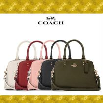 Coach Casual Style 2WAY Plain Other Animal Patterns Leather