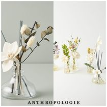 Anthropologie Fireplaces & Accessories