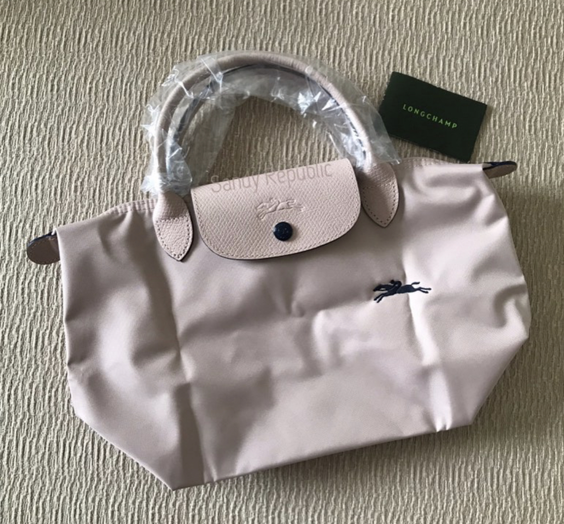 shop everlane longchamp