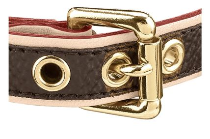 Louis Vuitton Baxter Dog Collar Pm