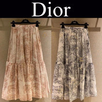 Christian Dior Casual Style Maxi Pleated Skirts Street Style
