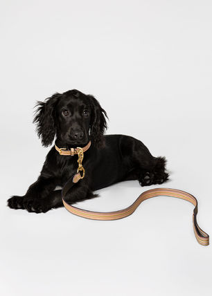Paul Smith Pet Supplies