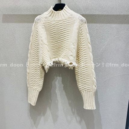 Short Wool Long Sleeves Plain High-Neck Cropped