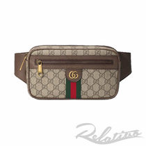 GUCCI Ophidia Stripes Monogram Street Style Crossbody Bag Logo Belt Bags