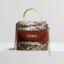 Chloe ABY Calfskin Party Style Elegant Style Logo Shoulder Bags