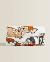 ZARA HOME Unisex Art Patterns Characters Throws