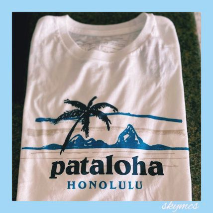 Patagonia More T-Shirts Tropical Patterns Cotton Short Sleeves Outdoor T-Shirts