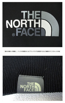 THE NORTH FACE Hoodies Pullovers Unisex Street Style Long Sleeves Cotton Oversized 14