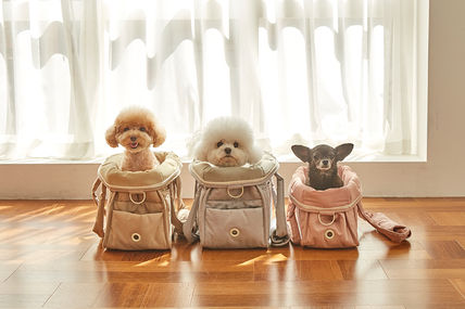 [ba&ttang] Carry bag for dogs with inner cushion S size