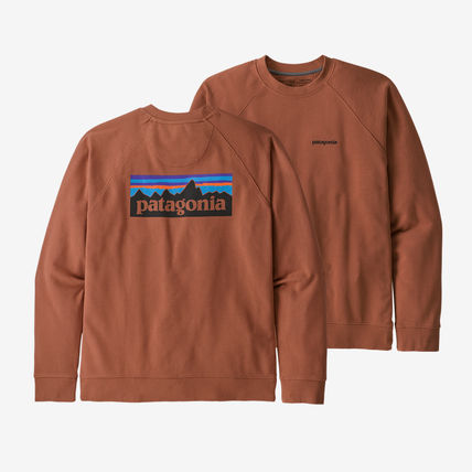 Patagonia Sweatshirts Long Sleeves Plain Logo Outdoor Sweatshirts 4