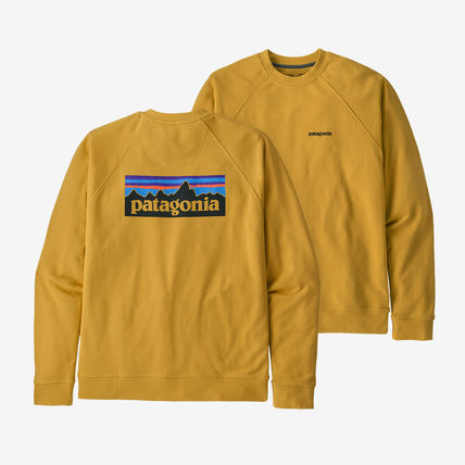 Patagonia Sweatshirts Long Sleeves Plain Logo Outdoor Sweatshirts 5