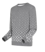 Louis Vuitton Sweaters Luxury Sweaters 4