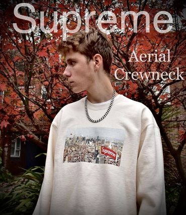 Supreme Sweatshirts Crew Neck Pullovers Unisex Street Style Long Sleeves Plain