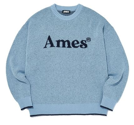 AMES-WORLDWIDE Sweaters Crew Neck Pullovers Unisex Street Style Long Sleeves 11