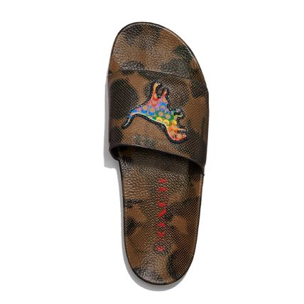 Coach Slide With Rainbow Signature Rexy