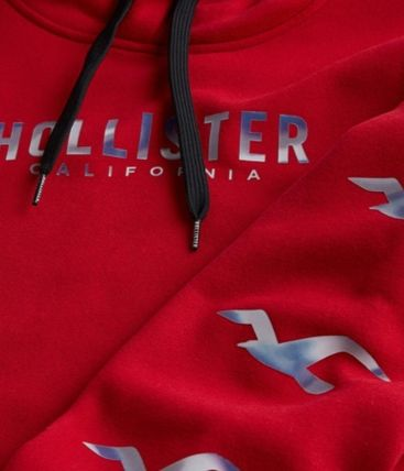 Hollister Co. Hoodies Blended Fabrics Street Style Long Sleeves Cotton Logo 3