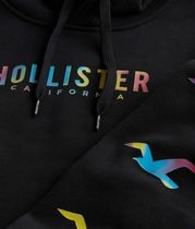 Hollister Co. Hoodies Blended Fabrics Street Style Long Sleeves Cotton Logo 5