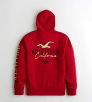 Hollister Co. Hoodies Blended Fabrics Street Style Long Sleeves Cotton Logo 7