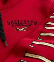 Hollister Co. Hoodies Blended Fabrics Street Style Long Sleeves Cotton Logo 9