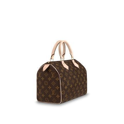 Louis Vuitton SPEEDY Speedy 25