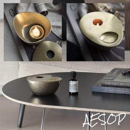 AESOP Fireplaces & Accessories