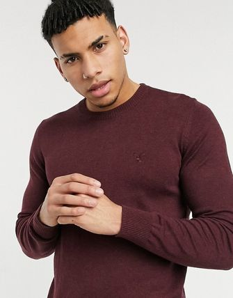 American Eagle Outfitters Logo Long Sleeves Plain Sweaters