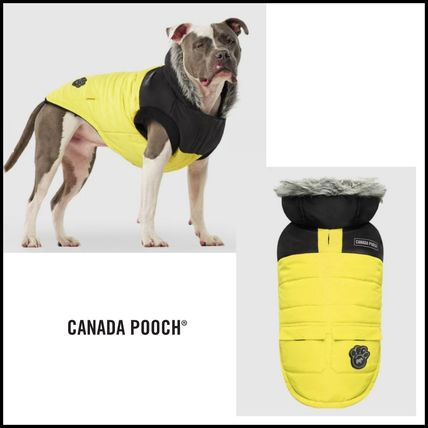 CANADA POOCH More Pet Supplies Street Style Pet Supplies