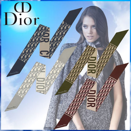 Christian Dior Casual Style Silk Street Style Plain Party Style
