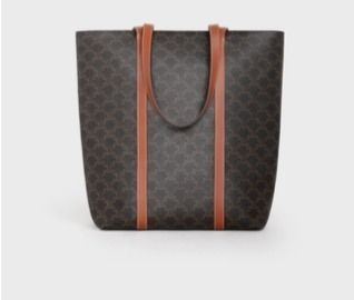 CELINE Triomphe Museum Bag In Triomphe Canvas