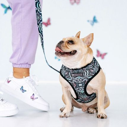 FRENCHIE More Pet Supplies Pet Supplies 3