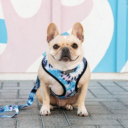 FRENCHIE More Pet Supplies Co-ord Pet Supplies