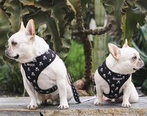 FRENCHIE Co-ord Pet Supplies