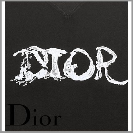 DIOR HOMME More T-Shirts Oversized dior and peter doig t-shirt 3